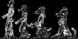 anthropomorphism scale